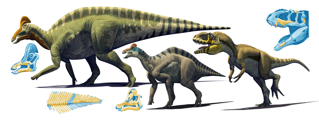 Mexican Dinosaurs, Quo Magazine August 2013. Infogrpihic of Magnapulia, Velafrons and Labocania. Art by Román García Mora.