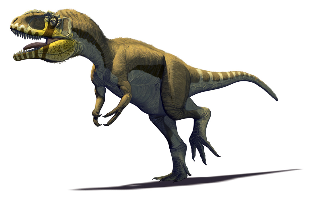 Mexican Dinosaurs, Quo Magazine August 2013. Labocania anomala, a robust theropod dinosaur relative to Tyrannosaurus rex. Late Cretaceous of Baja California. Art by Román García Mora.