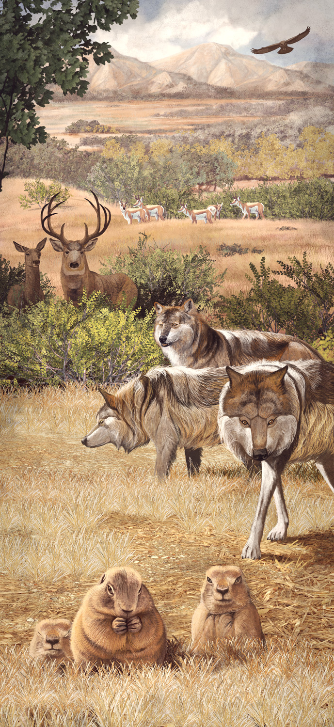 Mexican Wolf, Quo Magazine October 2013. Mexican Wolf Diorama. Art By Román García Mora.