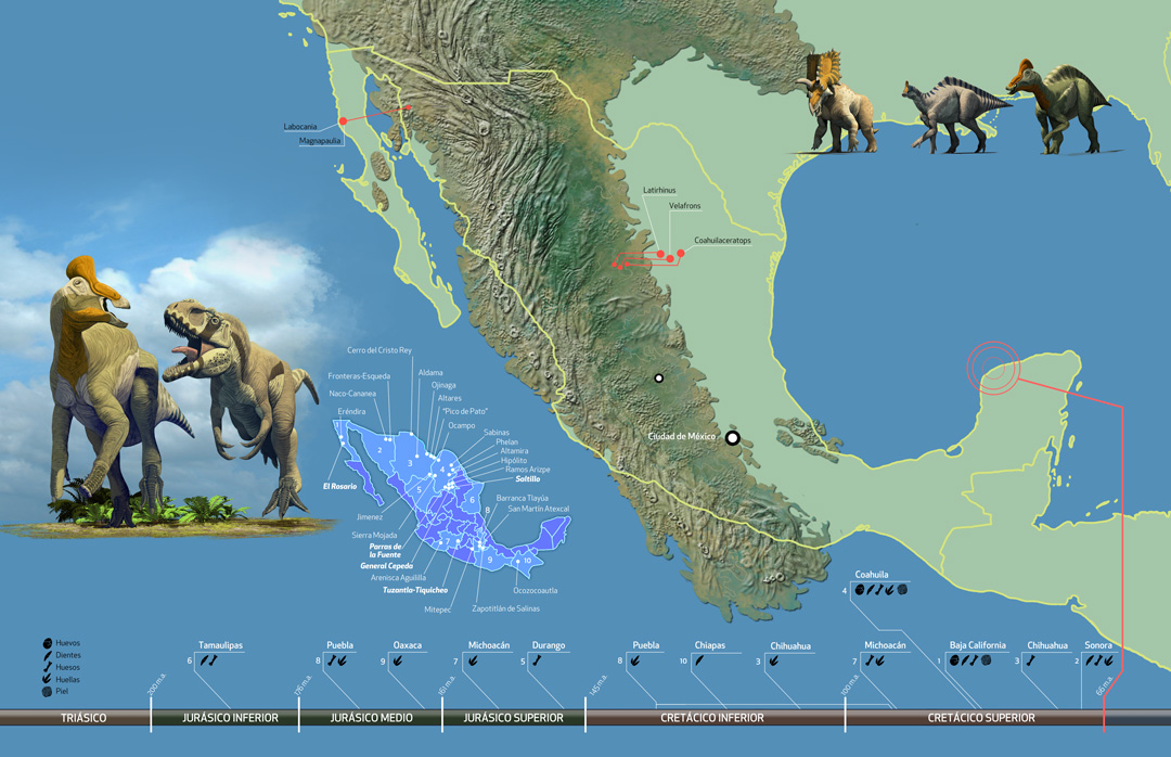 Mexican Dinosaurs, Quo Magazine August 2013. Map of Mexico duting the Late Cretaceus, displaying the fossilsites and the mayor dinosaur discoveries. Art by Román García Mora.
