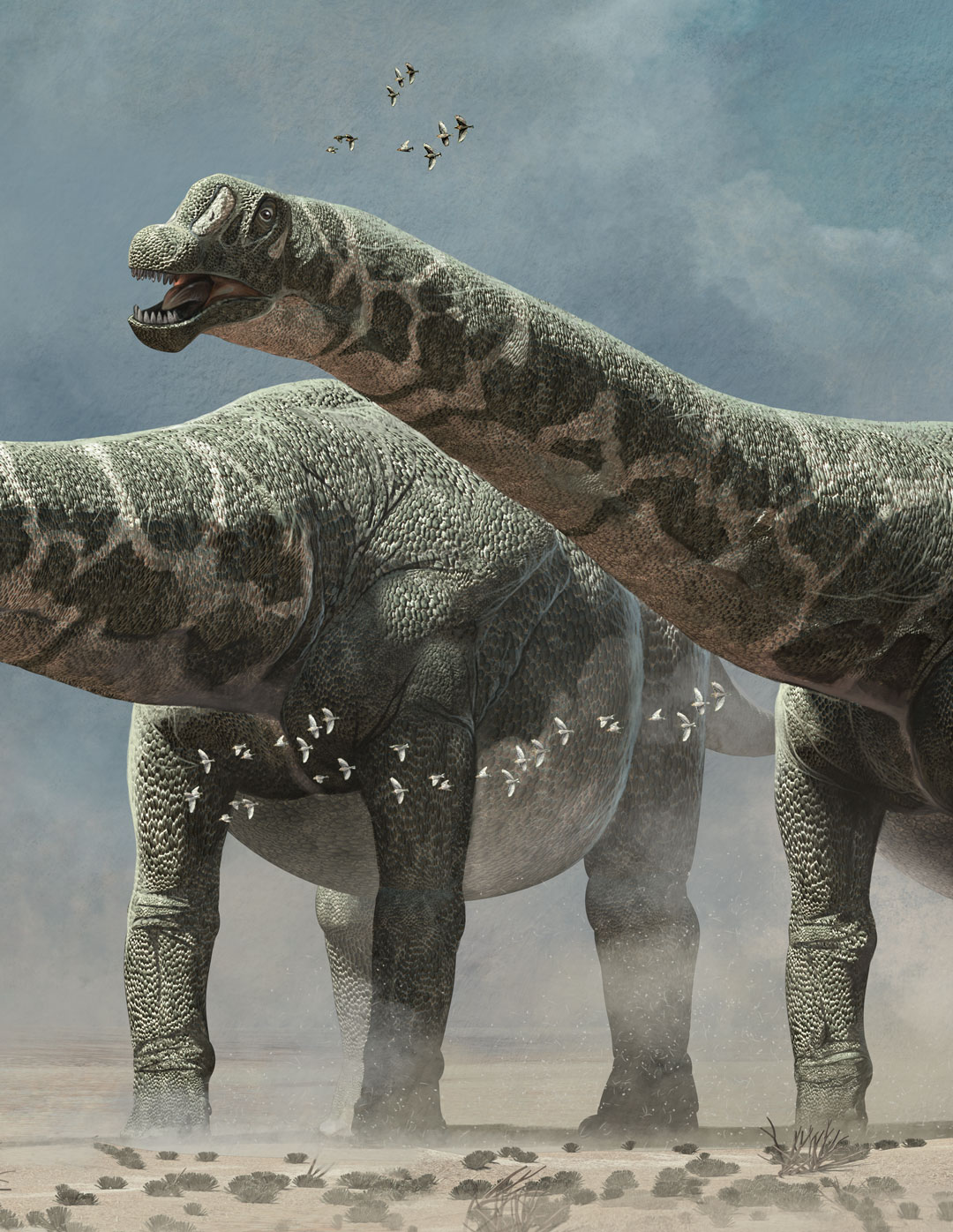 The biggest dinosaurs ever discovered, Quo Magazine November 2014. Detail of the dinosaurs. Art by Román García Mora.