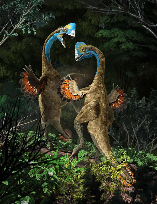 New Stars in the Dinosaur World, PM Magazin April 2015. Anzu wileiyi, males fighting. Art by Román García Mora.