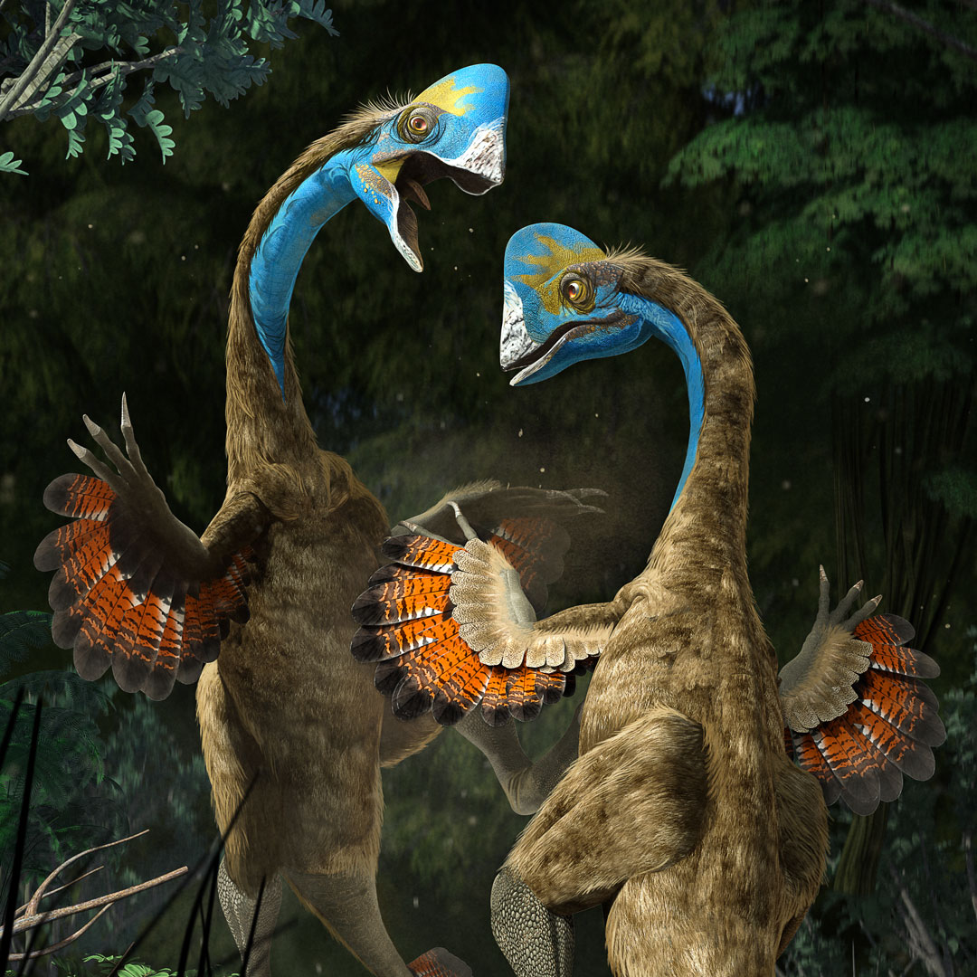 New Stars in the Dinosaur World, PM Magazin April 2015. Anzu wileiyi, detail. Art by Román García Mora.