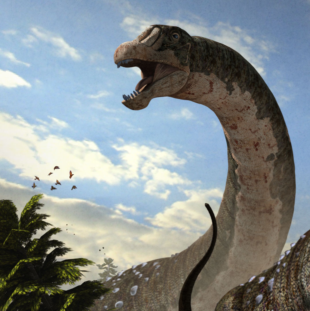 New Stars in the Dinosaur World, PM Magazin April 2015. Dreadnoughtus schrani, detail. Art by Román García Mora.