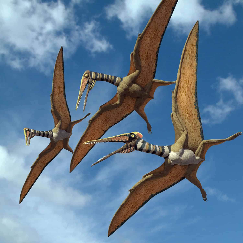 New Stars in the Dinosaur World, PM Magazin April 2015. Kryptodrakon progenitor. Art by Román García Mora.