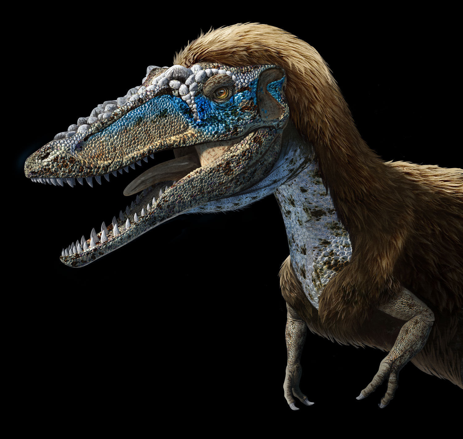 New Stars in the Dinosaur World, PM Magazin April 2015. Qianzhousaurus sinensis, aka Pinocchio rex. Art by Román García Mora.