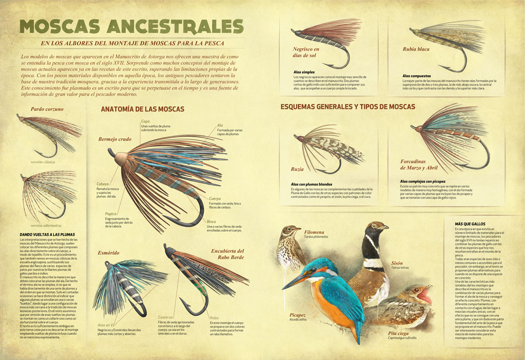 Fly Fishing Projects. Flies of the Manuscrito de Astorga. Infographic. Art by Román García Mora.
