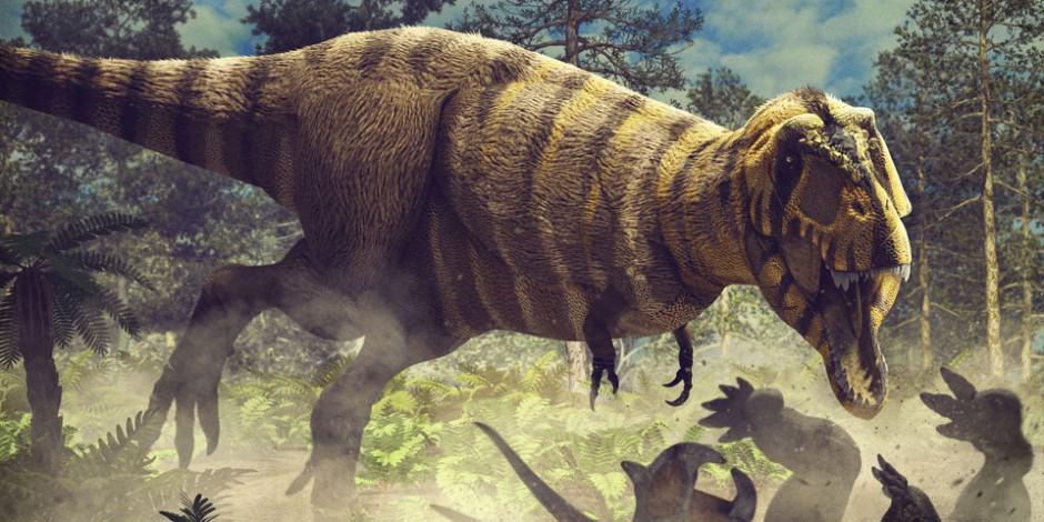 Dinosaur colection, National Geographic Kids. Tyrannosaurus rex. Art by Román García Mora.
